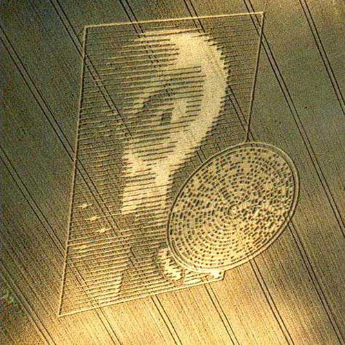 http://www.thelosthaven.co.uk/alienfacecrop.jpg